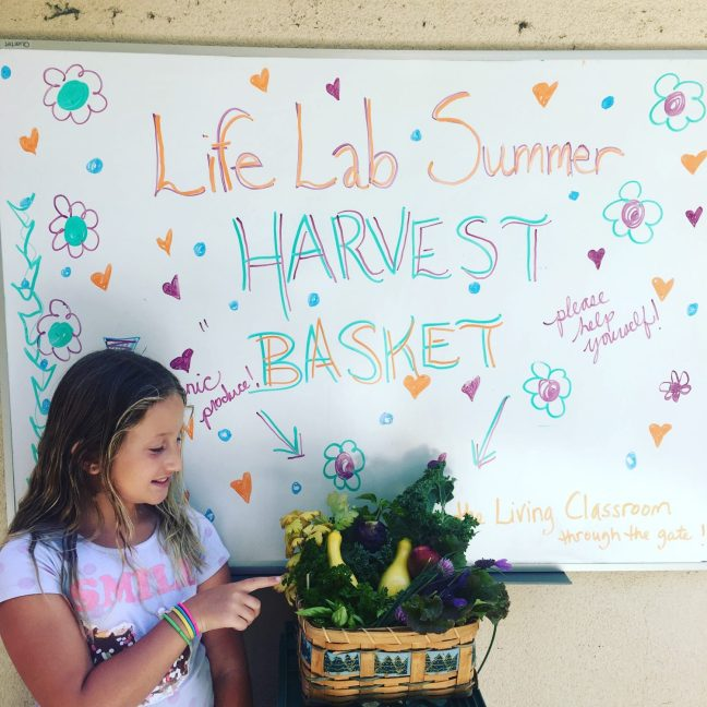 Santa Cruz Montessori Life Lab