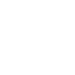 Santa Cruz Montessori Tree Logo