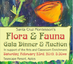 Santa Cruz Montessori Arts Auction flyer